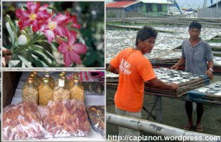 Cutflower and Dried Fish industry captivates business economy of Capiz