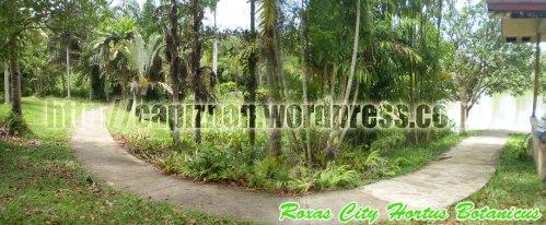 Roxas City Hortus Botanicus - Brgy. Milibili, Roxas City