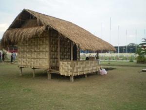Ati of Western Visayas IP House