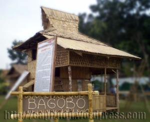 bagobo-IP House4